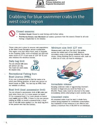 Crabbing for Blue Swmmer Crabs in the West Coast.jpg